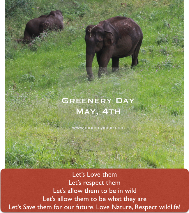 This Greener Day on 4th May, let's know some unsung women of India, who have been actively saving our environment and wildlife. More with Prerna Singh Bindra #greeneryday #nature #conserve #wildlife #prernasinghbindra